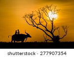 Silhouette Of Children On...