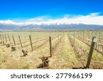 vineyard and the andes... | Shutterstock . vector #277966199