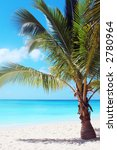 tropical beach with palm tree | Shutterstock . vector #2780964