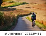 biker riding on cycling road... | Shutterstock . vector #278239451