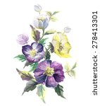watercolor floral illustration. ... | Shutterstock .eps vector #278413301