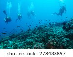 scuba diving | Shutterstock . vector #278438897