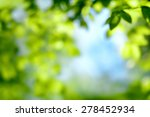 defocused scene of fresh... | Shutterstock . vector #278452934