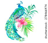 peacock on white background.... | Shutterstock . vector #278466974