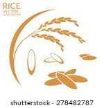 Rice. Set. Vector Illustration