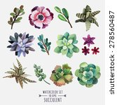 vector set of floral elements... | Shutterstock .eps vector #278560487