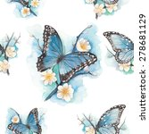 watercolor blue butterfly on... | Shutterstock .eps vector #278681129