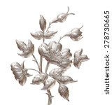 floral or botanical christmas... | Shutterstock . vector #278730665