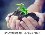 hand and plant | Shutterstock . vector #278737814