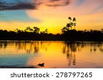 Colorful Sunset Deep In The...