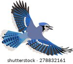 Cute Flying Blue Jay With...
