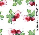 radish   watercolor pattern... | Shutterstock . vector #278845265