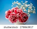 carnation | Shutterstock . vector #278863817
