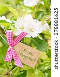 Small photo of apple tree blossom greeting card background - german for happy pentecost
