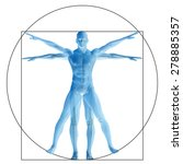 vitruvian human or man as a... | Shutterstock . vector #278885357