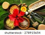 tropical spa setting on banana... | Shutterstock . vector #278915654