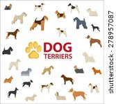 Dog Terriers Breeds Set