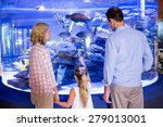 Familly Looking At Fish Tank A...