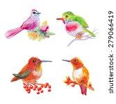 isolated birds set | Shutterstock .eps vector #279066419