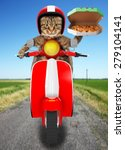 funny cat. pizza delivery | Shutterstock . vector #279104141