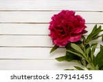 burgundy peony on the  wooden... | Shutterstock . vector #279141455