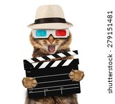 movie director cat with a... | Shutterstock . vector #279151481