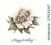 vintage rose. watercolor flower.... | Shutterstock .eps vector #279231347