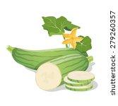 marrow vegetables. vector...   Shutterstock .eps vector #279260357