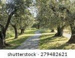 Anchiano  District Of Vinci ...