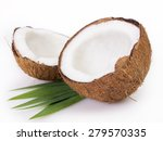coconut isolated on white... | Shutterstock . vector #279570335