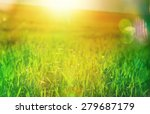 green grass | Shutterstock . vector #279687179
