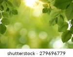 nature  spring background with... | Shutterstock . vector #279696779