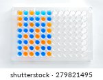 Small photo of ELISA (Enzyme-linked immunosorbent assay) plate