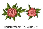 red peonies. vector illustration | Shutterstock .eps vector #279885071