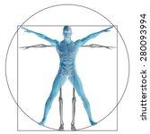 vitruvian human or man as a... | Shutterstock . vector #280093994