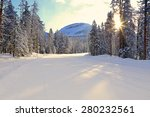 Snowy Road With Sunlight In Th...
