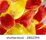 tulip petals in perfumed water | Shutterstock . vector #2802394