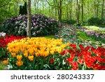 Keukenhof Garden  Netherlands....