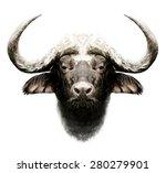 bull print t shirt graphics...   Shutterstock . vector #280279901