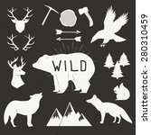 hand drawn wild animals and... | Shutterstock .eps vector #280310459