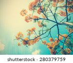 look up to orange peacock... | Shutterstock . vector #280379759