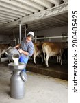 Small photo of SUGARCREEK, OH -- MAY 20, 2015: An Amish woman pouring raw milk into a filter after milking the cows behind her.