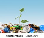 Plantlet growing on a garbage dump over clear blue sky - stock photo