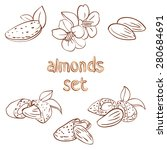 vector set of almond nuts and... | Shutterstock .eps vector #280684691
