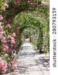 Stock photo luxuriant rose garden path 280793159