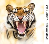 Young Siberian Tiger Action Growl - Fine Art prints