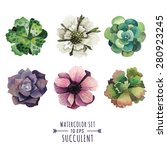 vector set of succulents and... | Shutterstock .eps vector #280923245