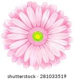 pink watercolor gerbera.