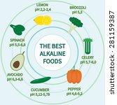list of alkaline foods .... | Shutterstock .eps vector #281159387