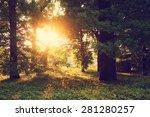 sunlight on green forest | Shutterstock . vector #281280257